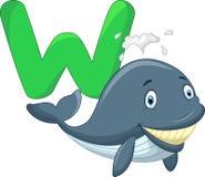Baleia bonito dos desenhos animados com alfabeto Fotografia de Stock