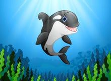 Baleia de assassino bonito sob a água ilustração royalty free
