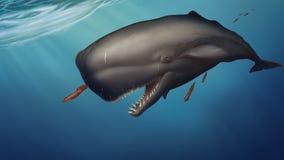 A baleia de esperma nada sob o calamar das capturas da ?gua em um fundo do oceano azul ilustração royalty free