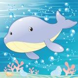 Baleia do bebê ilustração do vetor