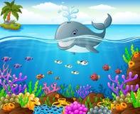 Baleia dos desenhos animados sob o mar Imagem de Stock Royalty Free