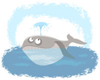 Baleia no oceano Fotos de Stock