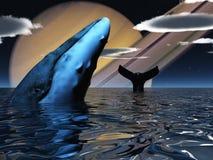baleia ilustração royalty free