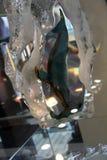 Baleia no vidro acrílico fotografia de stock