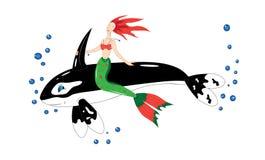 Baleia o assassino e a sereia. ilustração stock