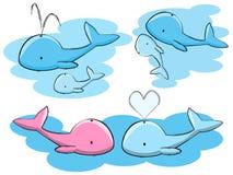 Baleias Imagem de Stock