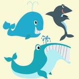 Baleias e tubarão Imagem de Stock