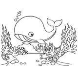 Baleias que colorem o vetor das páginas Fotografia de Stock