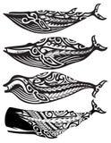 Baleias tribais ilustração stock