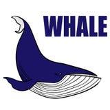 baleine illustration de vecteur