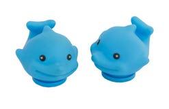 baleine bleue Photos libres de droits