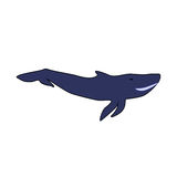 Baleine bleue sur un fond blanc Illustration Stock