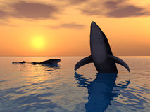 Baleine branchante Illustration Stock