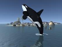 baleine d'orque de tueur illustration stock