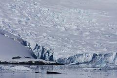 Baleine dans le port de paradis, Antarctique Photographie stock libre de droits