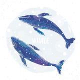 Baleine deux bleue illustration de vecteur