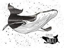 Baleine grunge tirée par la main d'aquarelle Vecteur Photos stock
