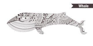 baleine Livre de coloration Image libre de droits