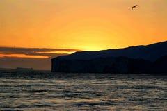 Baleine observant à un minuit d'Ilulissat Photographie stock