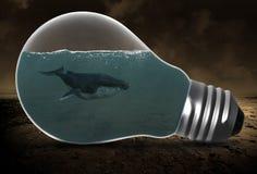 Baleine surréaliste, ampoule, environnement photo libre de droits