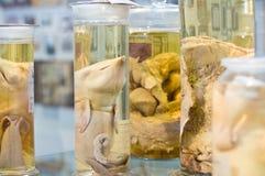 Baleines mortes de chéri dans des bouteilles Image libre de droits