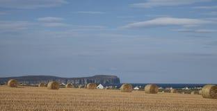 Balen van stro, blauwe hemel, huizen Stock Fotografie