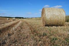 Balen van stro op een landbouwbedrijfgebied Royalty-vrije Stock Foto