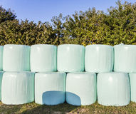 Balen van stro in plastiek worden verpakt dat Royalty-vrije Stock Afbeelding