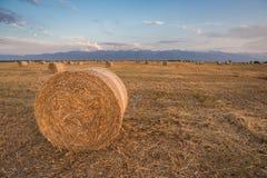 In balen verpakt Hay Rolls bij Zonsondergang royalty-vrije stock foto