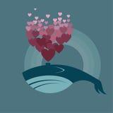 balena Immagini Stock Libere da Diritti