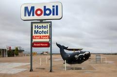 Balena al posto di ristoro Fotografia Stock Libera da Diritti