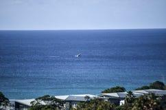 Balena che guarda dalla terra Fotografie Stock