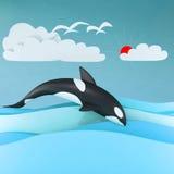 Balena dell'orca Immagini Stock Libere da Diritti
