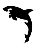 Balena di assassino Fotografie Stock