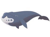 Balena di bowhead divertente Fotografia Stock