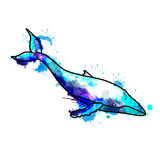 Balena di Hampback Immagini Stock