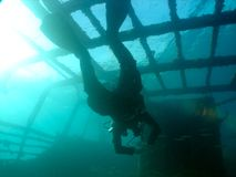 Balena - operatore subacqueo Fotografia Stock