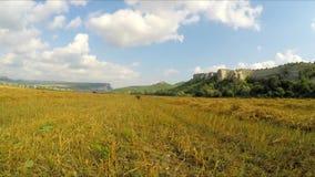 Baler av det Hay Scattered On Yellow Stubble fältet stock video