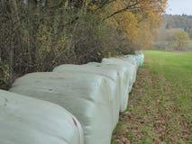 Baler av hö på kanten av en kulör autumskog som ska torkas Royaltyfri Fotografi
