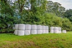 Baler av hö som staplas på kanten av grässlätten Royaltyfri Bild