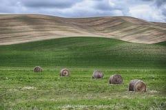Baler av Hay In The Palouse Arkivbild