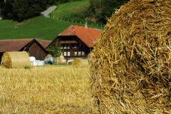 Baler av sugrör på ett fält royaltyfri bild