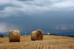 Baler för Stubblefält och sugrör Royaltyfria Foton