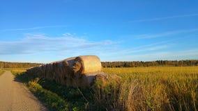 Baler på lantlig hayfield Royaltyfri Foto