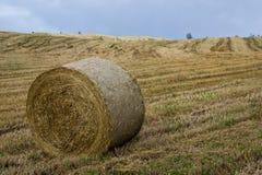Baler på skördat fält Arkivfoton