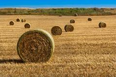 baler torkar sommar för jordbruksmarkisrael sugrör Arkivfoto