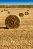 baler torkar sommar för jordbruksmarkisrael sugrör Arkivbild