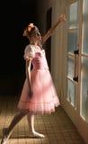 balerin potomstwa Obraz Stock