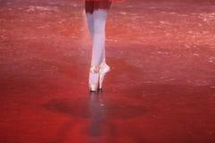 balerina Obrazy Royalty Free