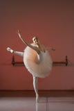 Balerina Fotografia Stock